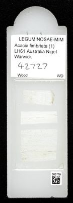 A specimen from Kew's microscope slide collection - whole slide. Image ref: KMIC000779_2016.10.18_preview
