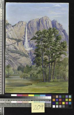 The Yosemite Waterfall, California, North, Marianne.
