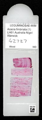 A specimen from Kew's microscope slide collection - whole slide. Image ref: KMIC000780_2016.10.18_preview