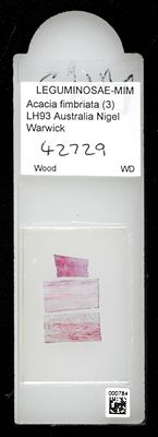 A specimen from Kew's microscope slide collection - whole slide. Image ref: KMIC000784_2016.10.18_preview