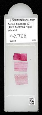 A specimen from Kew's microscope slide collection - whole slide. Image ref: KMIC000782_2016.10.18_preview