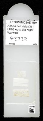 A specimen from Kew's microscope slide collection - whole slide. Image ref: KMIC000783_2016.10.18_preview