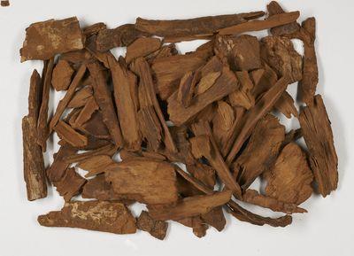 Rubiaceae Cinchona bark