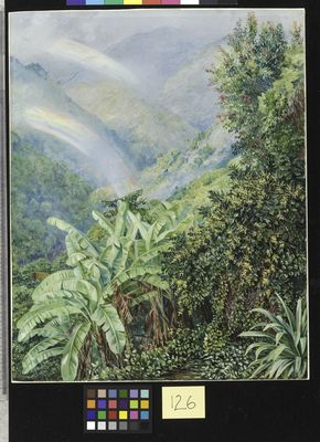 126. View from the Artist's House in Jamaica, with Double Rainbow.