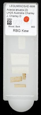 A specimen from Kew's microscope slide collection - whole slide. Image ref: KMIC000633_2016.09.12_preview