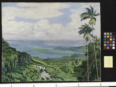 164. View over 0chos Rios, Jamaica.